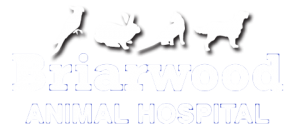 logo of briarwood animal hospital in stoney creek ontario