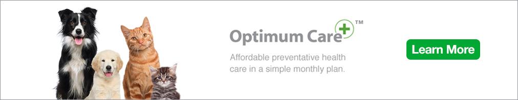 Optimum Care banner