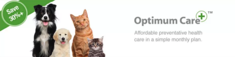 Optimum Care!