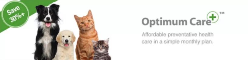 Optimum Care!