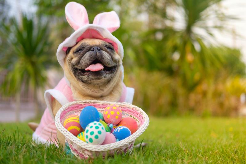 Briarwoos Easter 3