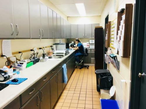 Briarwood - Lab